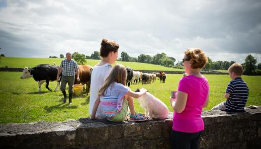 Irish B&B Farm Holiday