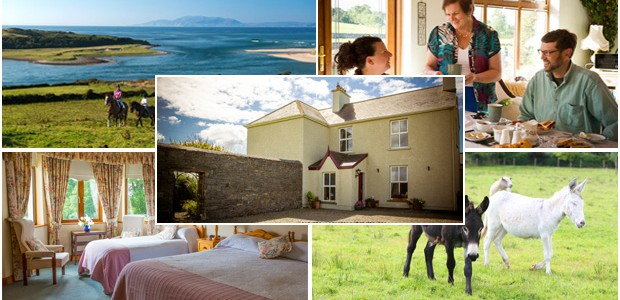 A typical day in an Irish farmhouse B&B