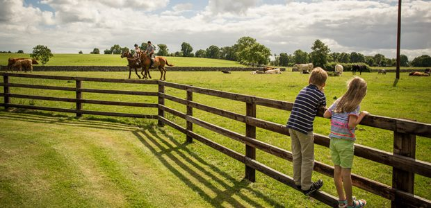 Family fun on a farmhouse holiday