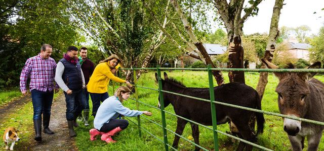Get back to nature on a farmhouse holiday