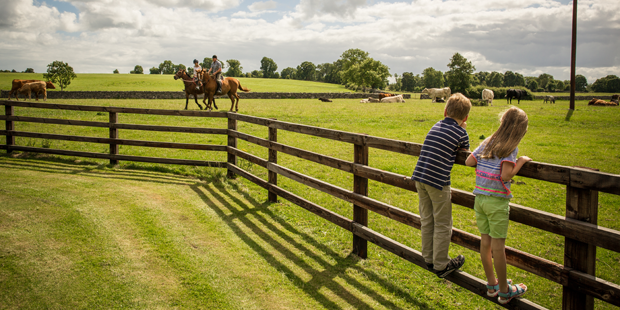 Farmstay getways, learn about everyday life on a working farm