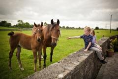 Memorable farmstay holidays