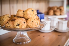 Homemade fruit scones