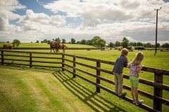 Children will love a farmstay holiday