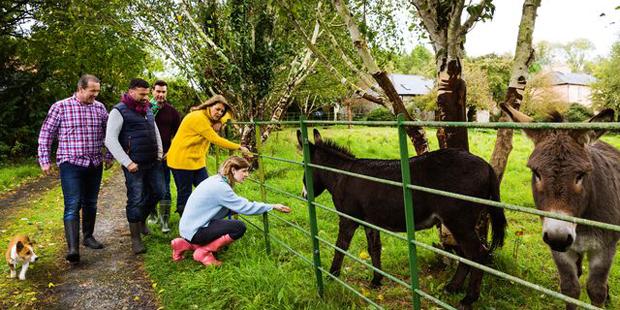 Cosy Farmhouse Winter Breaks