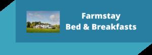 The Farmstay B&B Experience