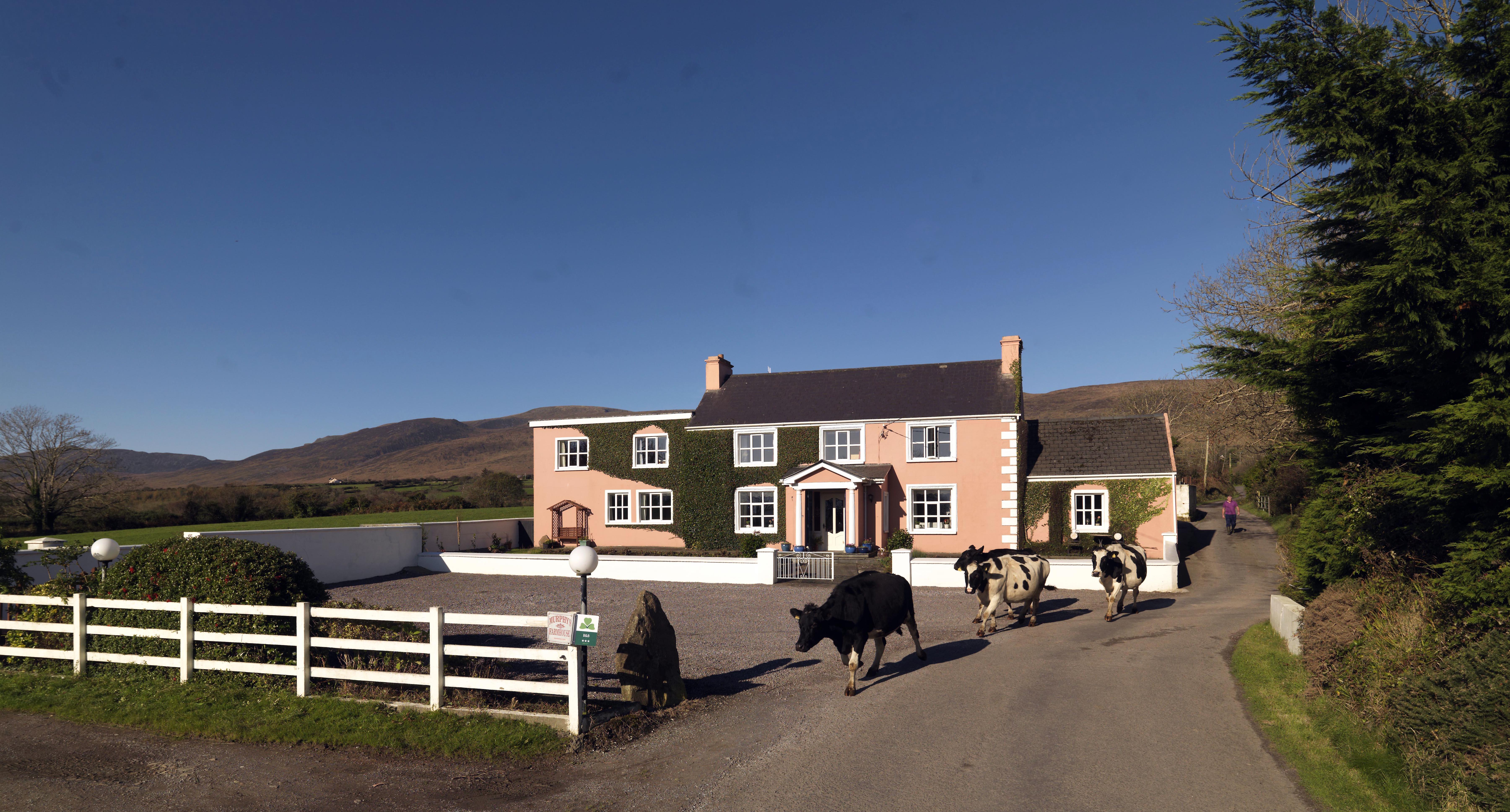 MURPHY'S FARMHOUSE